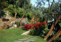 Romanti garden3
